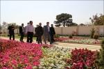 بازدید پارلمان شهری از ظرفیتهای سازمان رفاهی و تفریحی
