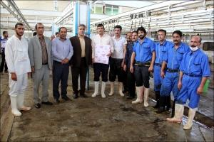 فعالیت کشتارگاه در روز عید سعید قربان